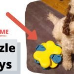 Best cockapoo puzzle toys