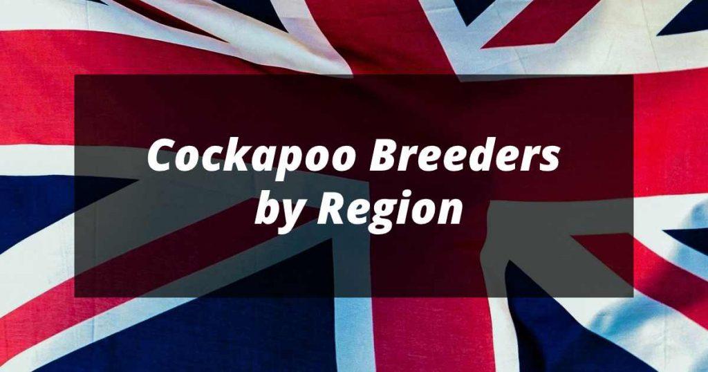 cockapoo breeders by region