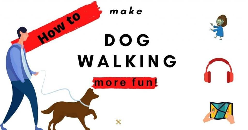How to make dog walking more fun